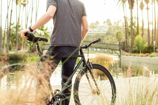 Pure Fix Plus Fixed Gear Bike Juliet Plus-2644
