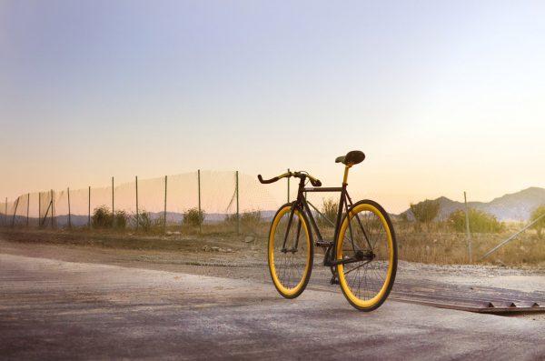 Pure Fix Original Fixed Gear Bike India-1777