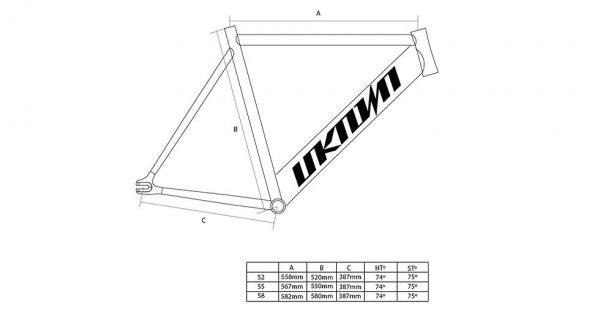 Unknown Fixed Gear Bike Paradigm Black-3306