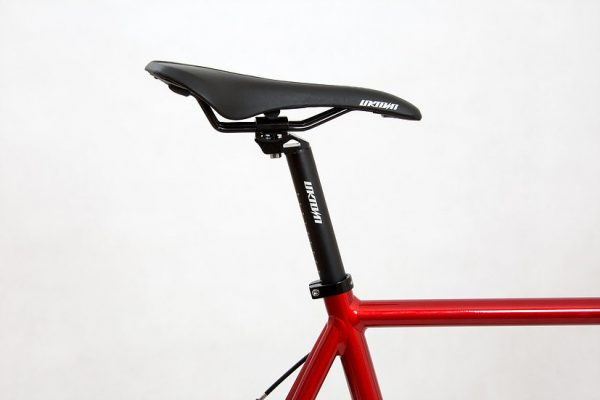 Unknown Fixed Gear Bike Paradigm Red-2017