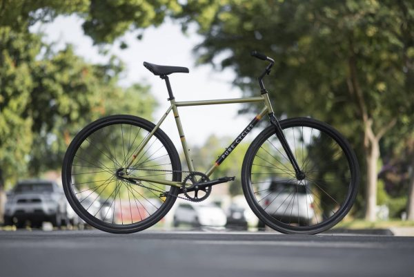 Pure Fix Coaster Bike Sulcata-6444